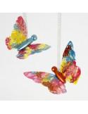 Vlinder lijf